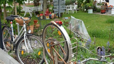 Wohin mit ausrangierten Fahrrädern? Die Türkheimerin Gusti Wachter hatte da eine besondere Idee: sie errichtete an einer Gartenseite einen Zaun aus alten Fahrrädern. Nicht nur als Dekoration, sondern auch ein gutes Beispiel für Recycling, mit einem Erlebnis in Vietnam als Hintergrund.