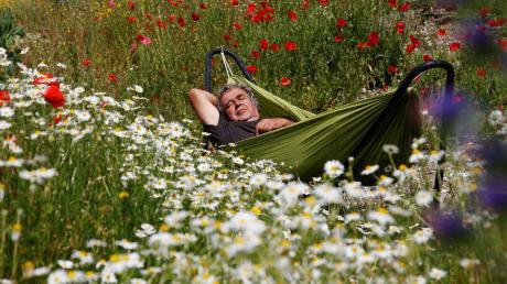 """Der Garten ist das Paradies auf Erden"""", sagt Christof Wegner. Nicht nur am """"Tag der Hängematte"""", dem 22. Juli, sollte man dieses Paradies genießen. Das Bild zeigt Wegner im Blütenmeer des Mehrgenerationengartens in Frickenhausen."""