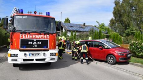Ein Insektenstich hat einen Verkehrsunfall in Ettringen ausgelöst.