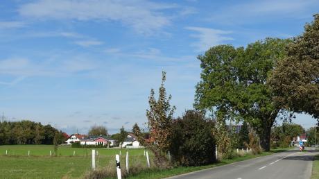 """Das geplante neue Wohnbaugebiet """"westlich der Stockheimer Straße"""" in Irsingen soll auf den zwei grünen Wiesen links im Bild entstehen."""