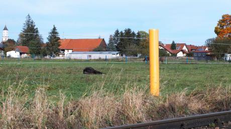 Die Fläche für das geplante Baugebiet in Ettringen ist ausgewählt. Bis dort Häuser stehen, dauert es aber noch eine Weile.