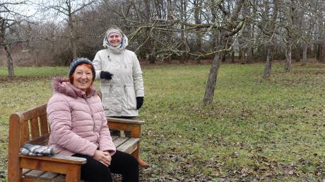 Brigitte Mücksch-Klein (links) und Gudrun Kissinger-Schneider (rechts) vom Bund Naturschutz Ortsgruppe Türkheim/Ettringen laden zu einem besonderen Winterspaziergang ein. Auf einer Streuobstwiese in Irsingen wurden die Obstbäume mit Gedichten und Wissenswertem geschmückt.