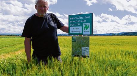 Im grünen Bereich: Landwirt Andreas Bersch von Naturland Buchloe macht als einer von drei Landwirten bei der Aktion für die Öko-Modellregion Ostallgäu mit und baut Gerste für ein Bio-Bier der Aktienbrauerei Kaufbeuren an.