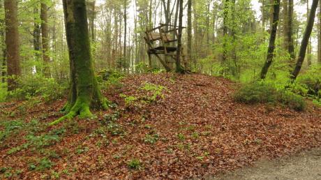 Ein Unbekannter hat im Wald einen Hochsitz umgeworfen und sich dabei gefilmt.