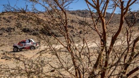 Fernando Alonso gibt sein Debüt bei der Rallye Dakar.