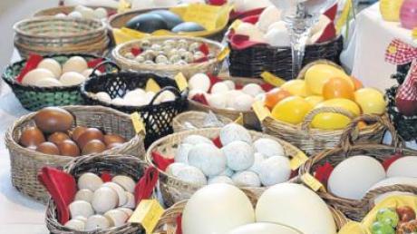 Eier aus aller Herren Länder, vom Emu über das Nanduhuhn, die Bachwachtel oder das Sprekelhuhn waren auf dem Markt zu finden.