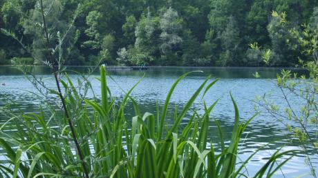 Dietenheimer Baggersee bei strahlendem Sonnenschein.