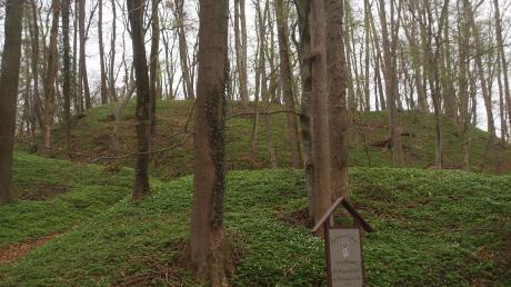 Diese Hügel erinnern an eine ehemalige Befestigungsanlage mitten im Wald in Nordholz.