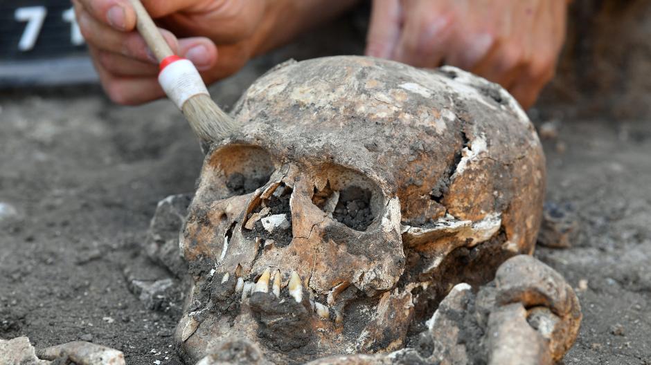 Ulm/Lonsee: Skelett eines Menschen in Silo gefunden - Nachrichten ...