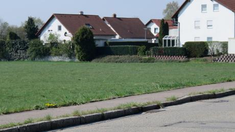Auf der grünen Wiese an der Thalfinger Straße soll ein Baugebiet mit 66 Wohneinheiten entstehen.