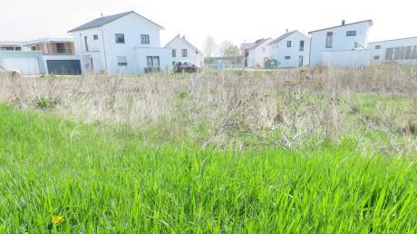 18 Wohnungen sollen an der Weißinger Straße gebaut werden. Doch das Thema Parkplätze ist ein Streitthema.