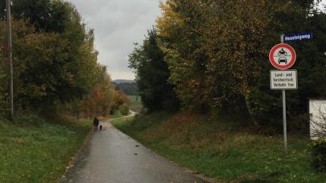 Der landwirtschaftlich genutzte Heusteigweg soll ausgebaut werden.