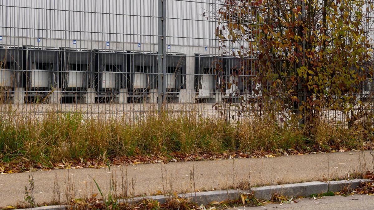 Das ehemalige Lidl-Lager in Pfaffenhofen verwildert - Augsburger Allgemeine