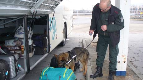 Spürhund Vicky fand in einer Reisetasche und einem Koffer zwölf Kilo Drogen.