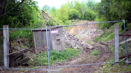 Der Weg in die ehemalige Bauschuttdeponie ist durch einen Zaun abgesperrt. Über die Jahre hat sich die Natur dort ihren Weg gebahnt.