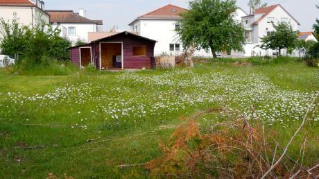 Auf diesem Grundstück an der Hirbishofer Straße in Holzheim soll ein Mehrfamilienhaus mit sieben Wohneinheiten errichtet werden, das den Gemeinderat jetzt intensiv beschäftigt hat.