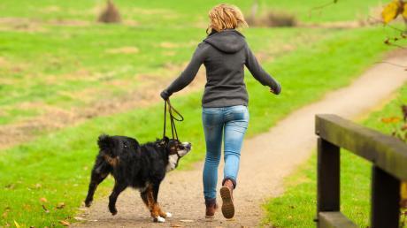 Die Untere Jagdbehörde empfiehlt: Wer seinen Hund außerhalb geschlossener Ortschaften spazieren führt, sollte ihn anleinen.