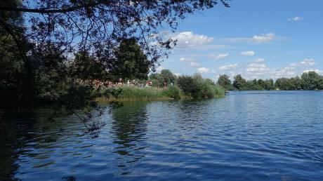 Strahlend blauer Himmel lockte am Montag viele Badeseegäste nach Ludwigsfeld.