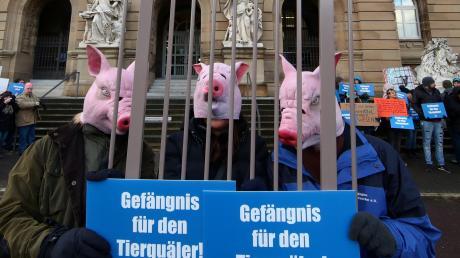 Demonstranten haben im Februar vor der Verhandlung gegen den Landwirt aus Merklingen eine harte Strafe gefordert. Der Fall und die Arbeit des Veterinäramts beschäftigten nun den Ulmer Hauptausschuss.