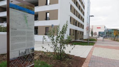 """An der """"Grünen Brücke"""" (hier mit Blick auf die Glacis-Galerie) steht eine von mehreren geplanten neuen Info-Tafeln zur Neu-Ulmer Geschichte."""
