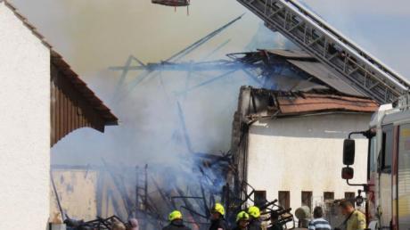Der Stall wurde vernichtet, viele Tiere kamen im Feuer um.