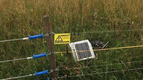 An einer landwirtschaftlichen Nutzfläche zwischen Kissing und Mering stiehlt ein Unbekannter ein Elektrozaungerät. Die Polizei sucht nach Zeugen. (Symbolbild)