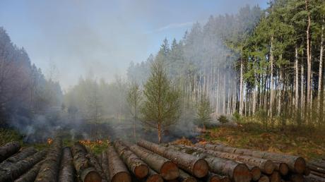 Bei der aktuell trockenen Witterung steigt die Waldbrandgefahr. Schon jetzt gilt die zweithöchste Warnstufe. Und in den nächsten Tagen könnte sich die Gefährdungslagenoch erhöhen.