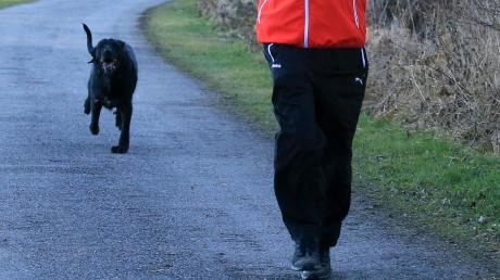 Am Samstagvormittag hat ein Hund eine Joggerin in Beilngries angefallen.