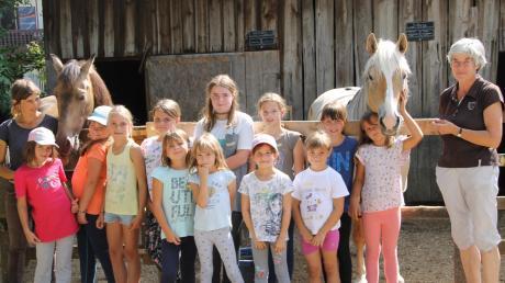 Anna und Vreni Richert zeigten den Kindern unter anderem, wie man Pferde richtig führt, wie man mit ihnen umgeht und sie beobachtet.