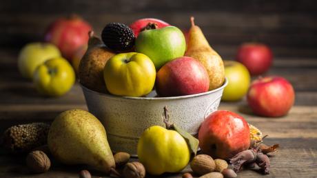 """Bei der Ausstellung """"Vielfalt schmeckt! Gesundes aus dem Garten"""" werden unter anderem 50 Apfelsorten, 15 Birnensorten und 25 Quittensorten vorgestellt."""