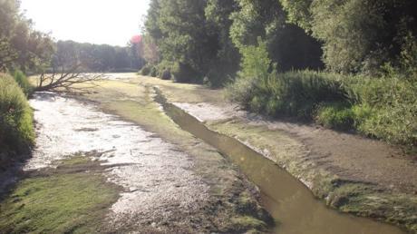 Das Bergwasser bei Marxheim: Wo sonst bis zu zwei Meter hoch das Wasser steht,zog sich nur ein dünnes Rinnsal.