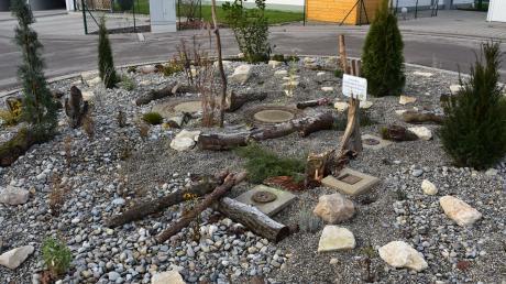 Bäume Natur Bienenfreundlich Kreisverkehr in Ingolstadt als Vorbild