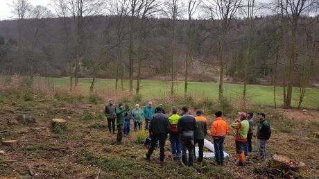 Im Kreuzschlag im Langen Tal zwischen der Hasenau und Rohrbach führten AELF und WBV eine Fortbildung über das richtige Aufforsten durch.