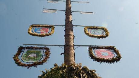 Dieses Jahr fast nirgends zu sehen: Maibäume.