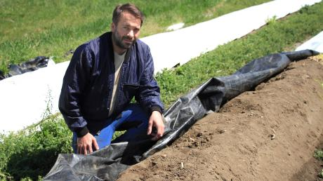 Landwirt Florian Raba aus Adelshausen auf einem seiner Spargelfelder.