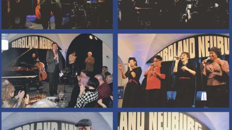 Diese Fotocollage aus diversen Auftritten der Konzertsaison zeigt, wie vielfältig das akustische Angebot des Neuburger Birdland-Jazzclubs auf Youtube ist.