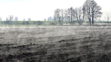 Die schwarze Erde des Donaumoos' dampft an diesem Morgen, aber der Torfkörper ist bereits deutlich geschrumpft.