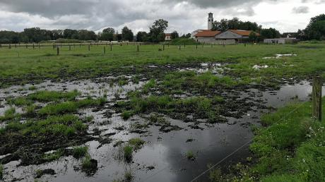 Eine überschwemmte Weide in Untermaxfeld. Verfault das Gras, entweicht Methangas. Dieses ist sogar klimaschädlicher als Kohlendioxid.