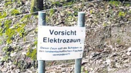 Nächste Woche will das Landratsamt Ansbach über die Zukunft des Wildschutzzauns entscheiden.