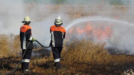 Feuerwehrleute löschen ein brennendes Weizenfeld zwischen Oettingen und Auhausen.