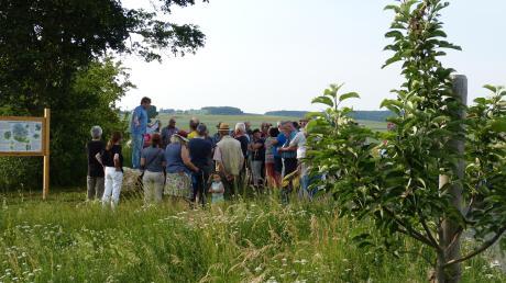 Zwischen Amerdingen und Aufhausen gibt es bereits 67 Apfelsorten zu bewundern, weitere sollen folgen.