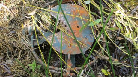 Die Tellereisenfalle war bei einem Biotop bei Amerdingen aufgestellt. Die Polizei sucht nach Hinweisen.