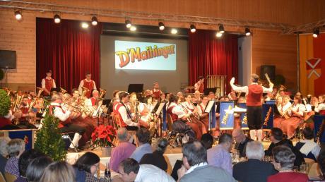 Die Stammkapelle des Musikverein Maihingen unter der Leitung von Thomas Christ spielte ihr Jahreskonzert in der Mehrzweckhalle in Wallerstein und zeigte dabei die ganze Bandbreite ihres musikalischen Könnens.