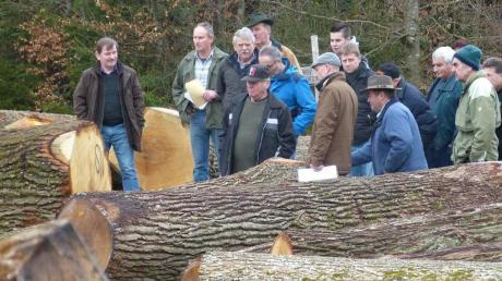 Die Wert- und Stammholzsubmission bei Bopfingen ging mit Rekordzahlen zu Ende.