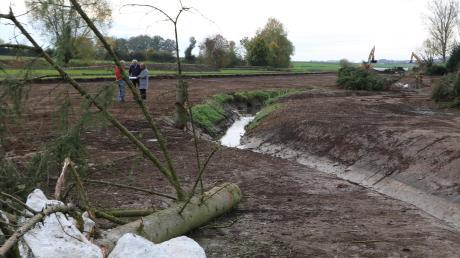 Der Augraben wird am westlichen Ortseingang Oettingens renaturiert. Arbeiter änderten den geraden Verlauf in einen mäandrierenden. Gefällte Bäume sollen Tieren als Unterschlupf dienen. Bald wird noch ein zweiter Bachlauf ausgegraben, der bei Hochwassersituationen Wasser aufnehmen kann. Weitere Fotos finden Sie unter www.rieser-nachrichten.de/bilder auf unserer Internetseite.