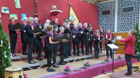 Tiere waren das Motto des Herbstkonzertes des Gesangvereins Mönchsdeggingen.