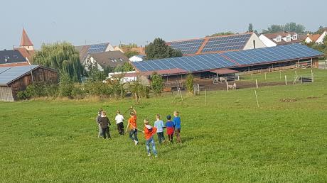 Kinder haben bereits beim Ferienprogramm den Reimlinger Hof kennenlernen dürfen.