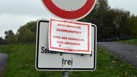 Ein Ortsschild in Brandenburg weist das Gebiet als Kernzone der Afrikanischen Schweinepest an der polnischen Grenze aus. Auch andere Gebiete in Deutschland sind betroffen.