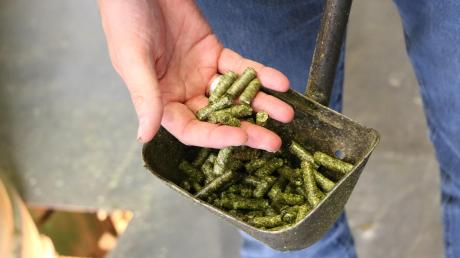Pellets aus Luzernen: Mit über 2,5 Mio. Dezitonnen stellte die deutsche Trocknungsbranche eine Säule zur Versorgung der regionalen Landwirte mit heimischen Futtermitteln dar.