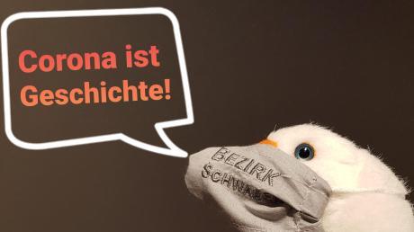 Die Museumsgans Marie, das Maskottchen des Museums Kulturland Ries in Maihingen, wirbt für den Corona-Sammlungsaufruf. Foto: MKLR/Marilena Brunner